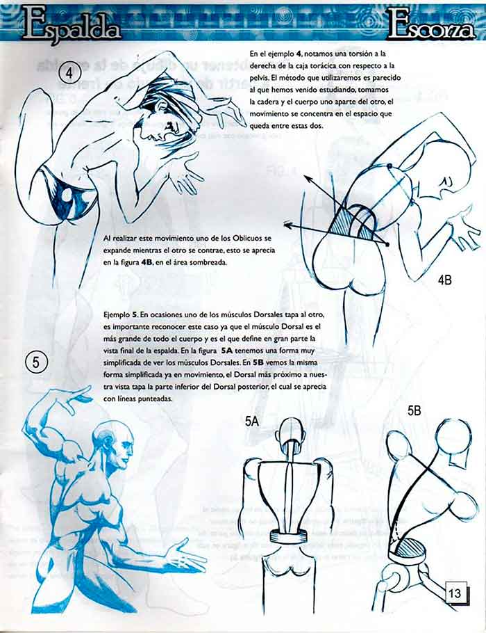 Descarga: DibujArte #39 - Dibujar la espalda.