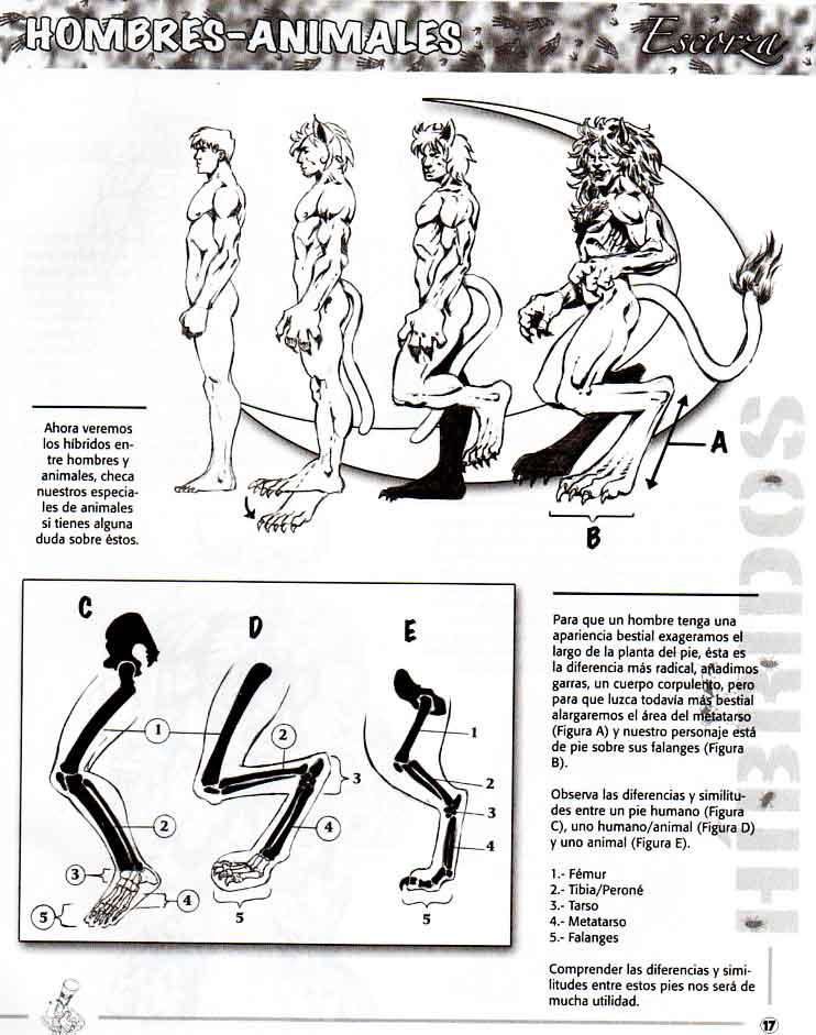 Como dibujar híbridos hombre bestia
